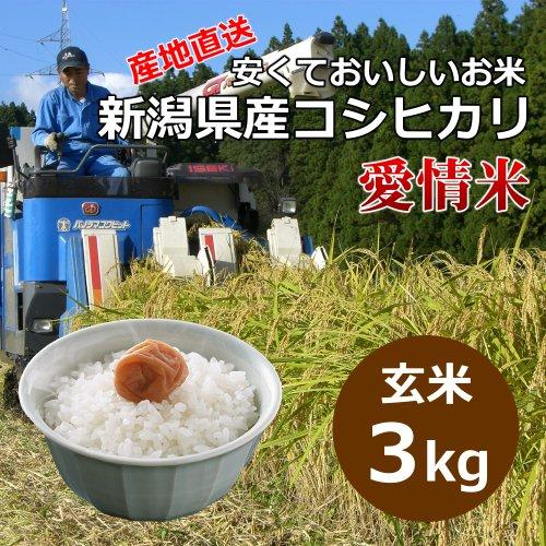 【自宅用】[玄米]安くておいしいお米 新潟県産コシヒカリ 愛情米[3キロ]
