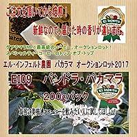 グアテマラ最高峰 エル・インヘルト農園 オークションロット パンドラ・コンセプション2020(200g) (粉(中挽き))