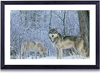 冬の狼 -動物 -#27885 - 絵画 装飾画 壁飾り アートパネル インテリアアート 木製の枠 壁ポスター モダン 現代壁の絵 額縁付きの完成品 横 30×40cm