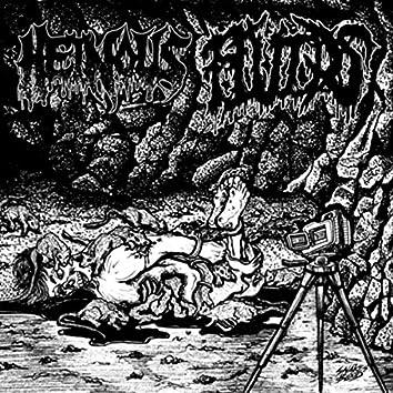 Snuffed / Torture Euphoric Split