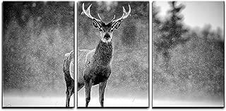 animal print home accessories uk