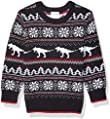 Amazon Brand - Spotted Zebra Boys Pullover Crew Sweaters
