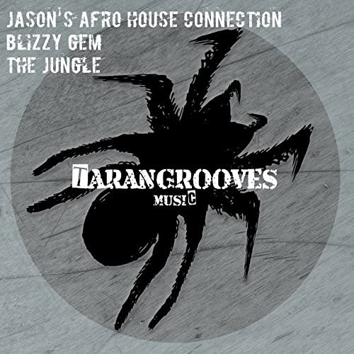 Jason's Afro House Connection, Blizzy Gem