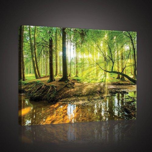 Welt-der-TräumeWANDBILD CANVASBILD Wandbild Leinwandbild Kunstdruck Canvas | Sonniger Wald | O4 (60cm. x 40cm.) | Canvas Picture Print PP10513O4-MS | Natur Landschaft Wald Bäume Fluss Bach Sonne