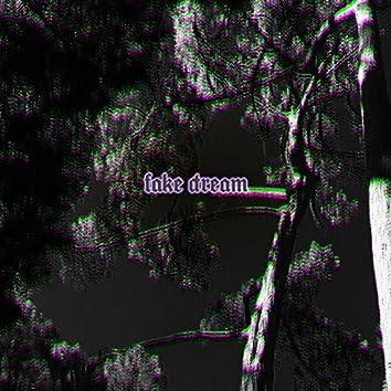 Fake Dream
