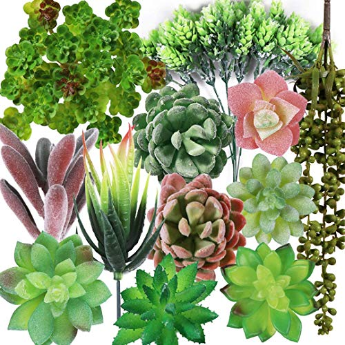LITA Kleine künstliche Sukkulenten, künstliche Kaktus, Aloe Vera Crassulaceae, Perlenschnur, künstliche Sukkulenten, Pflanzen für Garten, Hochzeit, Heimdekoration, 12 Blumen