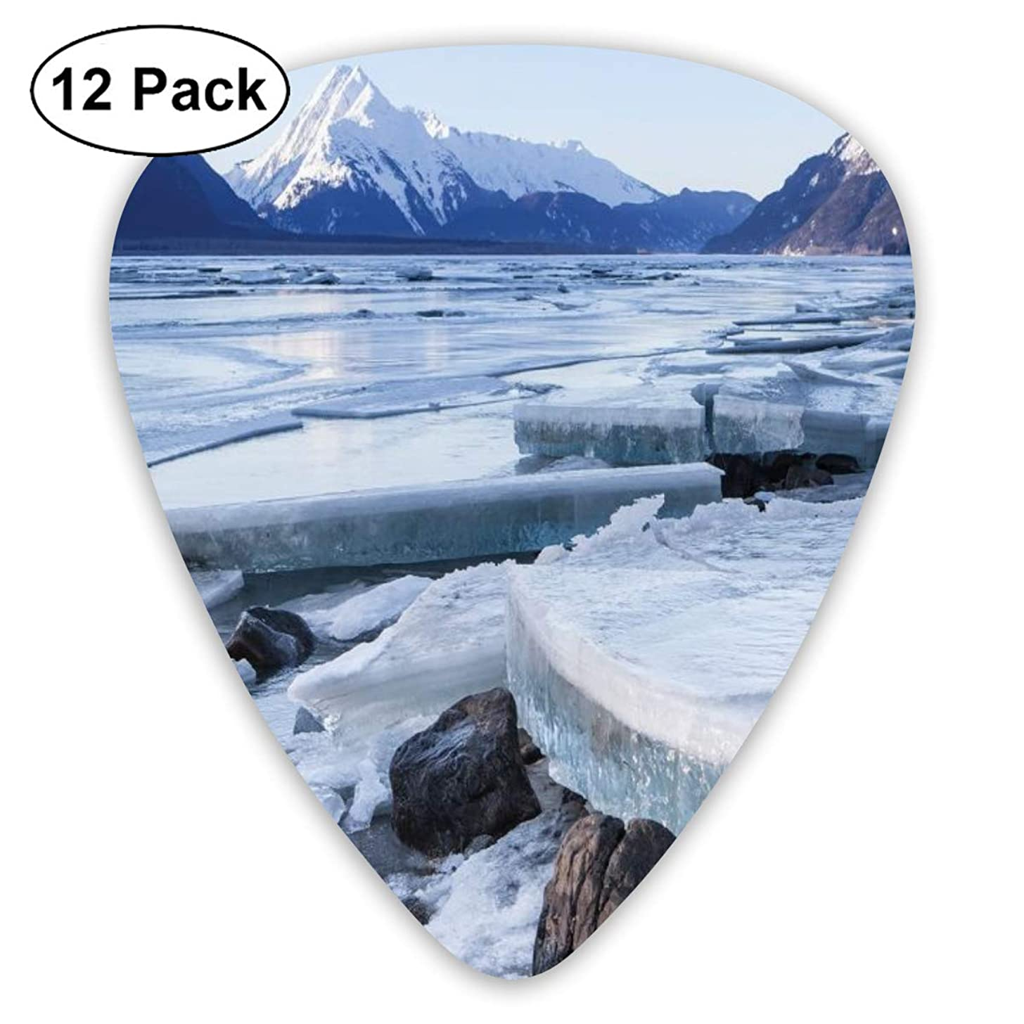 Guitar Picks - Abstract Art Colorful Designs,Ice Chunks On The Side Of Chilkat River In North America Winter Season,Unique Guitar Gift,For Bass Electric & Acoustic Guitars-12 Pack