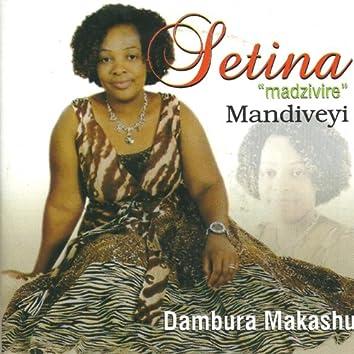 Dambura makashu
