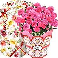 花のギフト社 母の日 カーネーション 花鉢 鉢花 鉢植え プレゼント 花 鉢 フラワーギフト 5号鉢