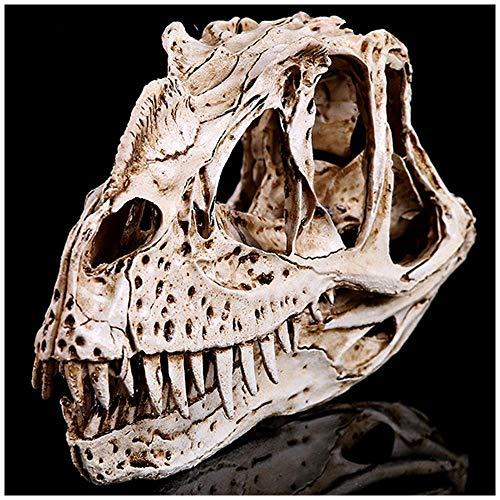 ZYQ Realista Craneo de Dinosaurio Artesanias de Resina Craneo Animal Fosil Simulacion Dinosaurio Fosil Craneo Replicas Dinosaurio Cabeza Fosiles para la ensenanza o Regalo de Cumpleanos para ninos