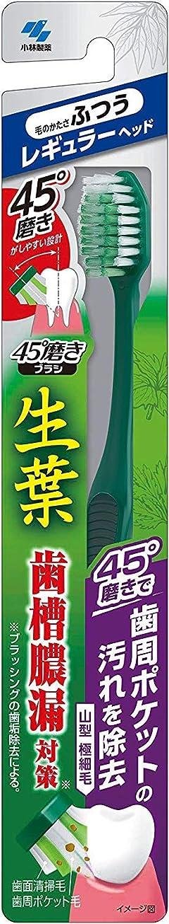 恐れ期待する復活小林製薬 生葉45°磨きブラシ 歯周ポケットの汚れを除去 レギュラー ふつう