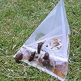 NoSlug 40 Stück Schneckenfalle Hygienisch Einwegartikel ohne Gift