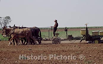 Historic Pictoric Lancaster, PA Photo - Amish Life in Lancaster, Pennsylvania - 24in x 16in