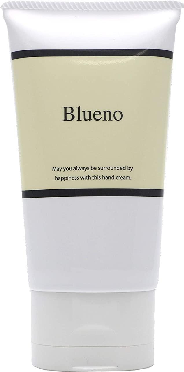 エキスパートオーバーラン提案Blueno (ブルーノ) モイストリッチ ハンドクリーム 80g