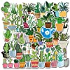 Girl Super Cute Watercolor Cactus and Succulent Plants Stickers Water Bottle Skateboard Motorcycle Phone Bicycle Luggage… |