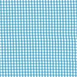 Vichy cuadro pequeño (Azul)