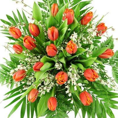 """Strauß Tulpenmärchen"" Großer Blumenstrauß mit 20 roten Tulpen"