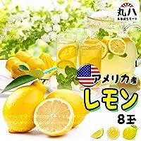 アメリカ産 生 レモン8玉