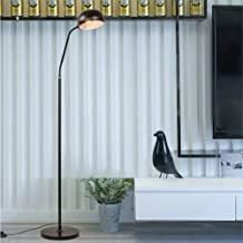 Metal Floor Lamp - HSada LED Reading Lamp - Free Standing Modern Pole Light with Adjustable Gooseneck and Heavy Metal Based for Living Room, Bedroom, Study Room and Office - Ship from US
