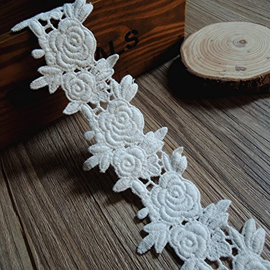 5/10/15Yards Vintage Embroidered Lace Edge Trim Ribbon Wedding Applique DIY Sewing Craft (S-5Yards, White-4)