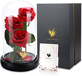 Beauty and The Beast Rose Set, Perfect Combination of Red Silk Roses and LED String Lights in The Glass Dome and Wooden Base, is The Best Gift for Christmas Valentine's Day (Three Flowers)