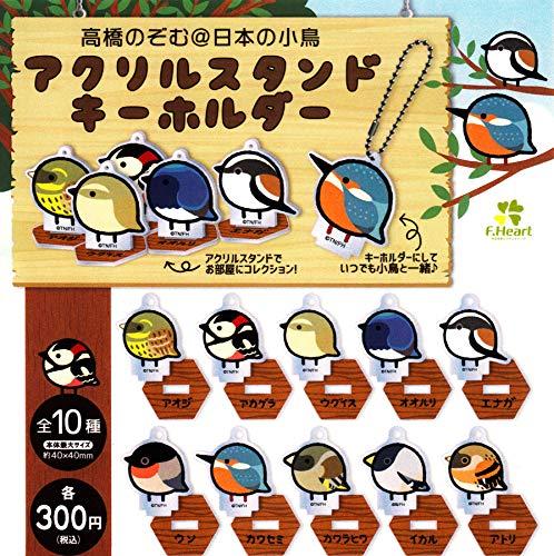 高橋のぞむ@日本の小鳥 アクリルスタンドキーホルダー 全10種セット ガチャガチャ
