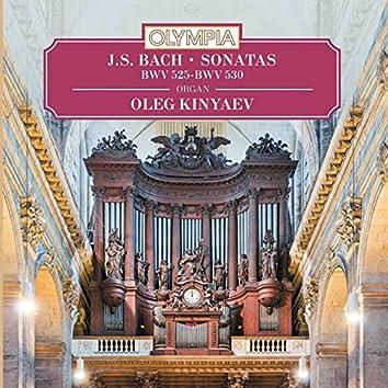 Bach: Sonatas, BWV 525-530