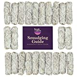 PURPLE CANYON Sage Smudge Kit - (24 Pack) - White Sage Smudge Sticks Incense Kit for Meditation Home Cleansing Aromatherapy and Smudge Rituals