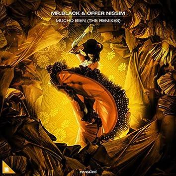 Mucho Bien (The Remixes)