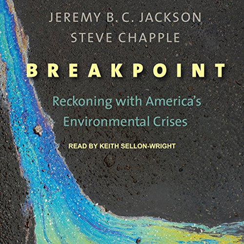 Breakpoint cover art