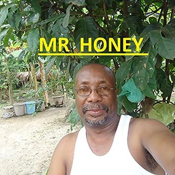 Mr Honey