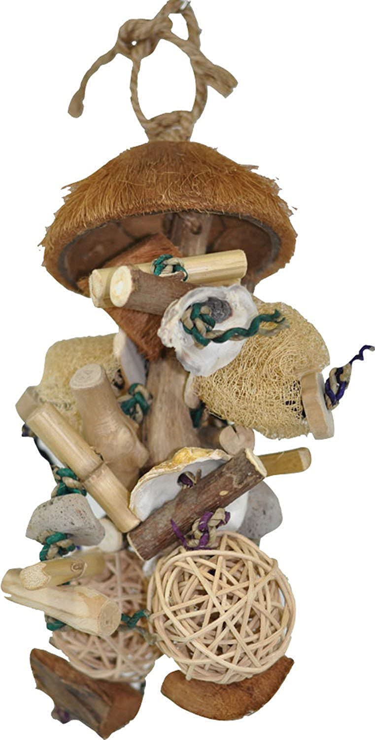 A&E CAGE COMPANY 001158 Java Wood Java Bush Bird Toy Assorted, 7X9 in