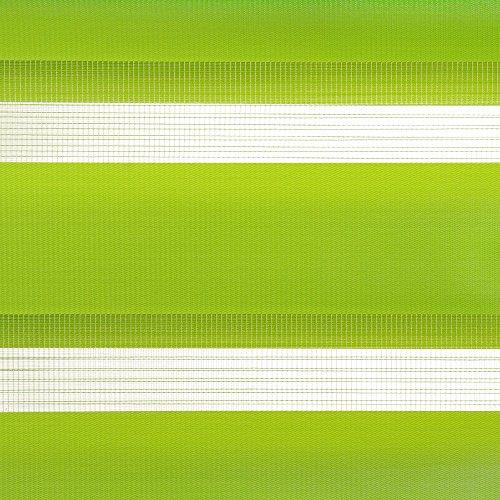 Liedeco Doppelrollo, Klemmfix Duo-Rollo Young Colours«, Lichtschutz, Fixmaß, ohne Bohren