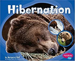 Bears And Hibernation Books For Preschool