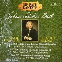 Bach Cantatas Vol. 7: BWV 11 (Ascension Oratorio) / BWV 100 / BWV 200