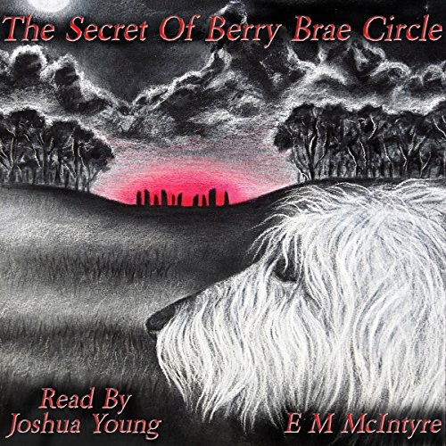 The Secret of Berry Brae Circle audiobook cover art