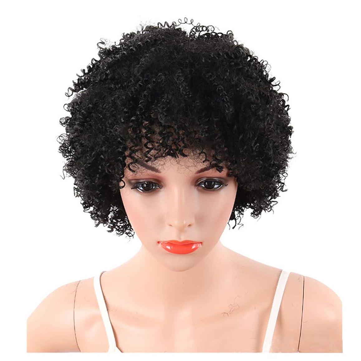 抽象化疑問を超えて多くの危険がある状況YOUQIU ショートボブウィッグ女性ナチュラル人工毛かつら用6