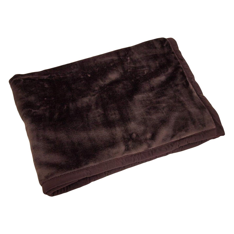 水星エールガロンハーフケット 2枚合わせ シルクタッチ 100×140cmハーフサイズ 毛布 ブランケット (ブラウン)