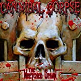 Songtexte von Cannibal Corpse - The Wretched Spawn