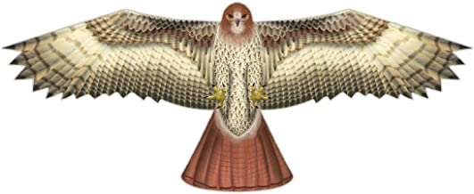 X-Kites Birds of Prey Kite 48