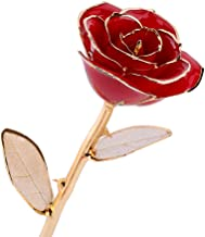ZJchao Romantic Gift for Wife, Dipped in 24k Gold Real Petal Forever Preserved Long Stem Rose with Golden Leaf, Idea for Her (Red)