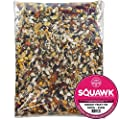 SQUAWK Parrot Fruit Mixture | Premium Grade Tropical Bird Food for Parrots | Nutritious and Healthy Mix for Macaws, African Grey, Amazons, Hookbills | Rich in Vitamins, 22 Ingredients Feed (500g) from SQUAWK