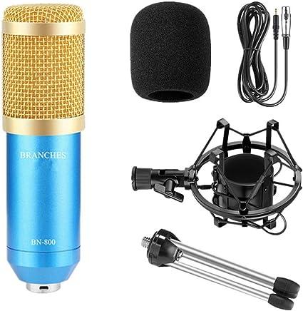 NanYin Kit Microfono per condensatore Professionale BM-800: Microfono per Computer + Shock Mount + Blister + Cavo BM 800 Microfono BM800 (Color : Package1 Blue) - Trova i prezzi più bassi