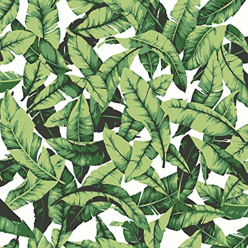 RoomMates Tropical Palm Leaf Peel and Stick Wallpaper, 20.5' x 16.5 feet, Green - RMK11045WP