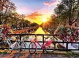 Buffalo Games - Cycling in Amsterdam - 1000 Piece Jigsaw Puzzle