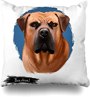 Ahawoso Throw Pillow Cover Square 20x20 Animalia Boerboel South African Mastiff Dog Digital Animals Wildlife Biology Breed Canine Canis Lupus Decorative Pillowcase Home Decor Zippered Cushion Case
