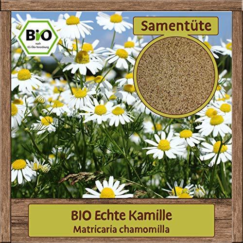 Samenliebe BIO Kräuter Samen Kamille Echte (Matricaria chamomilla) | BIO Kamillesamen Kräutersamen | Samenfestes BIO Saatgut für 5m²