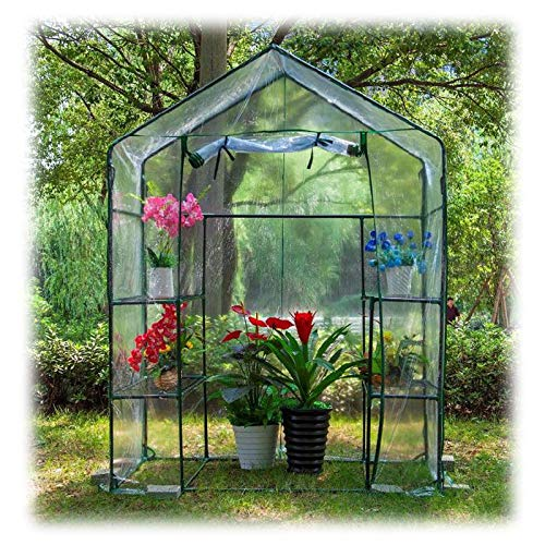 Greenhouse for Plant Outdoor, Walk-in Greenhouse Portable Stand Gardening Greenhouse Band Roll Up Zipper Door Insulation and Snow Protection, 2 Colors (Color : Clear, Size : 143x73x195cm)