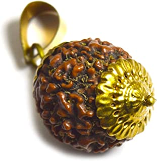 Jewelryonclick Real 8 Mukhi Eight Face Rudraksha Pendant Prayer Bead Gold Plated Locket for Healing Seed