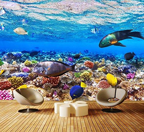 dalinda Premium Vliestapete Korallenriff mit Fische Fototapete DA00000568 XXL 400 x 280 cm - 8 Teile - Vlies Vliestapete XXL